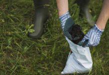 miracle grow fertilizer