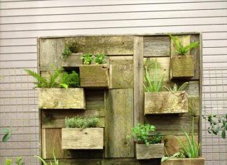 vertical garden with Garden Accessories