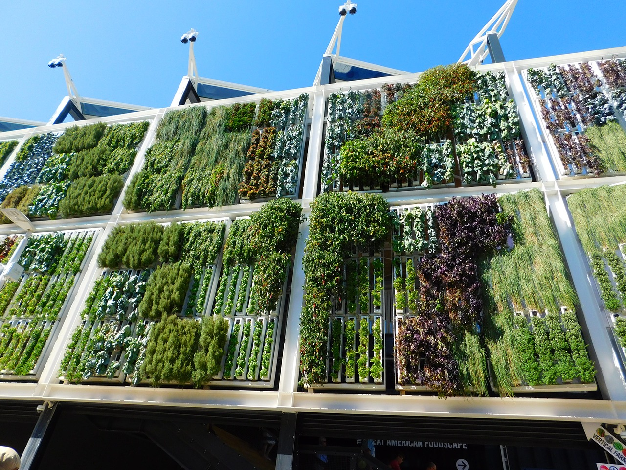 vertical garden exhibition
