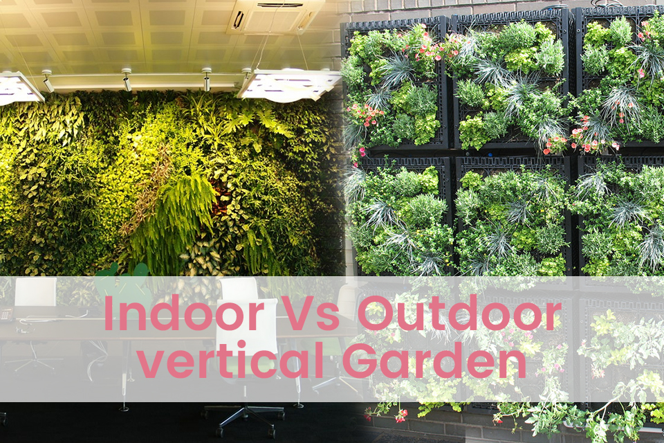indoor vs outdoor vertical garden