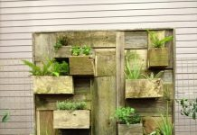 vertical garden with Garden Accessories