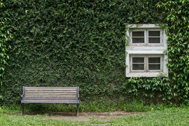 Superb Vertical Garden Kit Our Top Five Picks 2019 Your Short Links Chair Design For Home Short Linksinfo