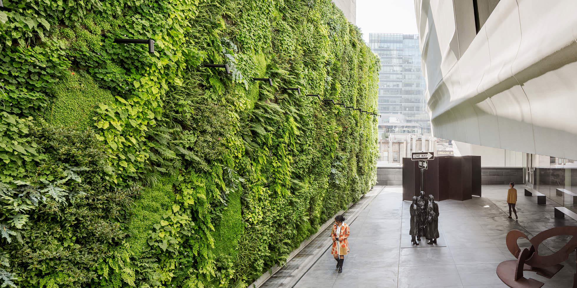 Green wall what is it and how to build one your - Building a living wall ...