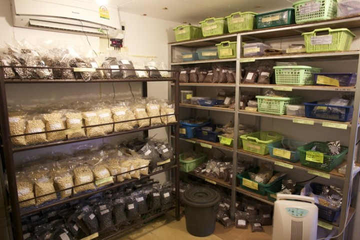 ​Proper Storage Conditions for Seeds