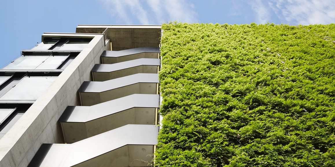 green wall on a commercial building