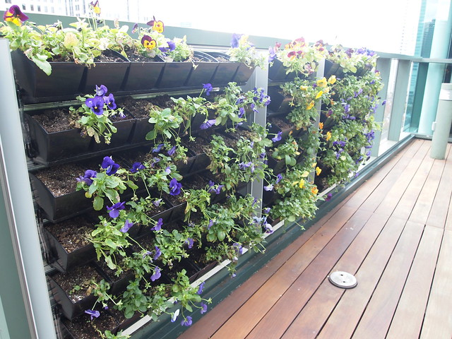 vertical herbal garden