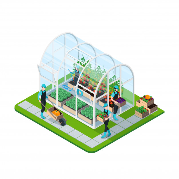 hoop greenhouse vector