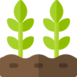 plants icon